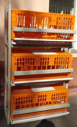 клетки полной комплектации для перепелов