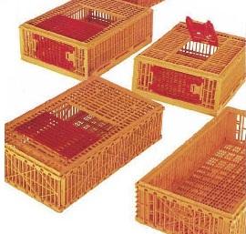 Ящики для транспортировки кроликов