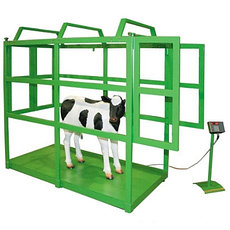 Весы для скота  КРС МРС Свинь олени